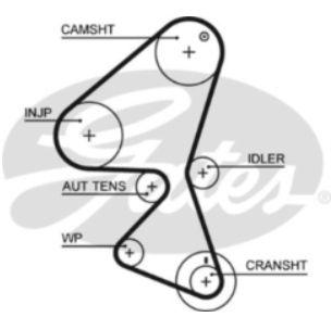 Cam Timing Belt - 1.4 Diesel Models